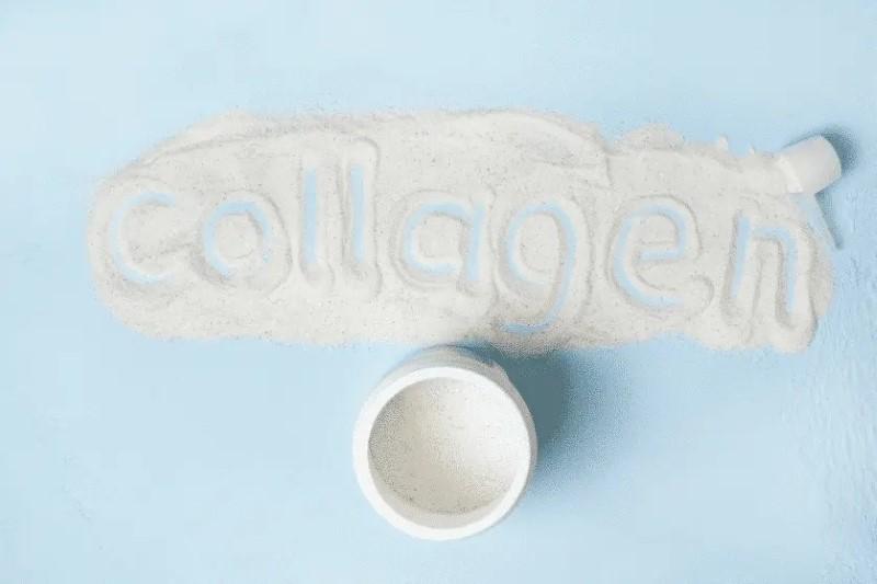 Kolagen je glavna bjelančevinska komponenta kože